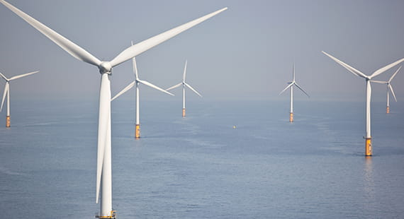 Driving force of future offshore wind